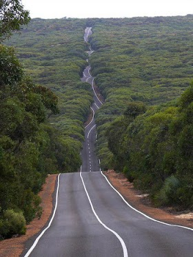 Kangaroo Island road in Flinders Chase National Park, Australia