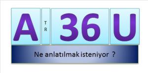 A_36_U