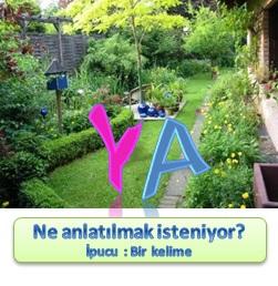 Resfebe _ YA